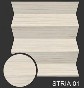 STRIA 01