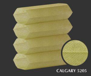 calgary-5205-1-
