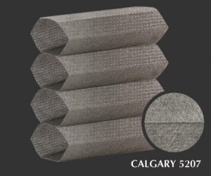 calgary-5207-1-