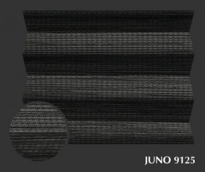 juno_9125