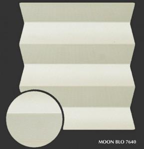 moon_blo7640 s