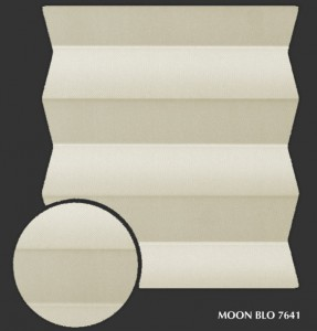moon_blo7641 s