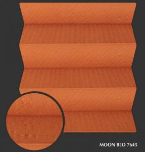 moon_blo7645 s