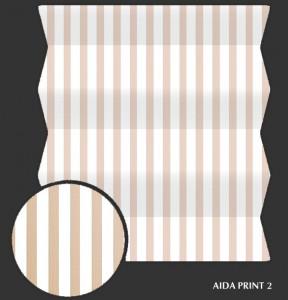aida_print2 s
