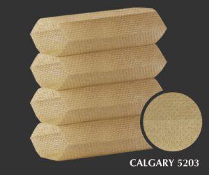 calgary-5203-1-