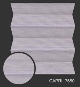 capri7650 s