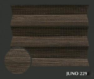 juno_2295