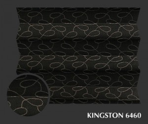 kingston6460