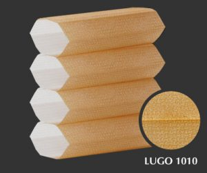 lugo-1010