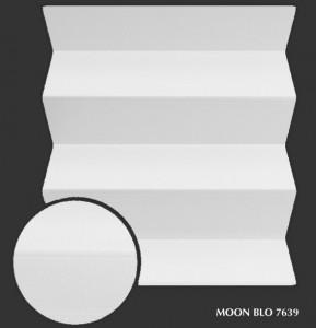 moon_blo7639 s