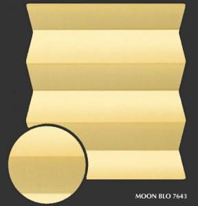 moon_blo7643 s