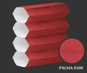 palma-0300-1-